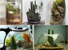 objetos para decorar banheiro - terrarios em vidro
