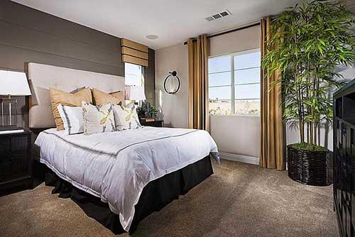 quarto elegante com plantas ornamentais