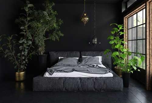 quarto escuro com plantas na decoracao