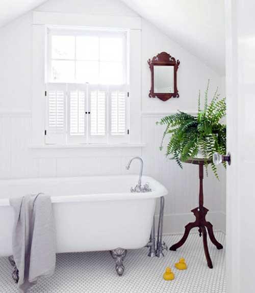 banheiro branco feminino com samambaia
