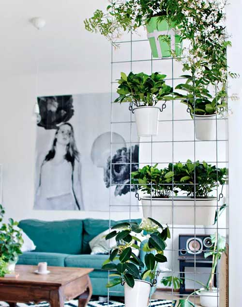 jardim de inverno diy pra sala de estar