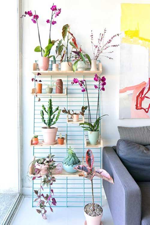 sala de estar com jardim suspenso de orquideas