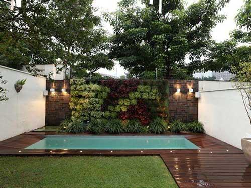 imagem de quintal com piscina e muro verde