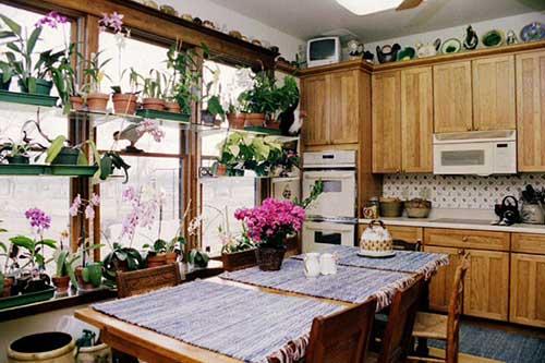 cozinha rustica com jardim repleto de flores