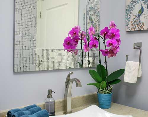 orquidea roxa pra decorar banheiro