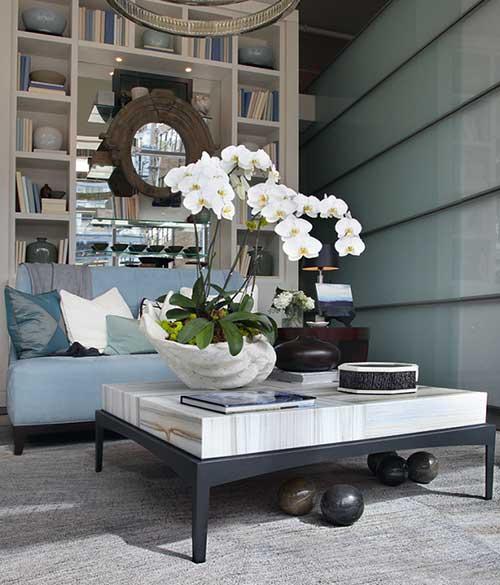 orquidea branca na sala de estar
