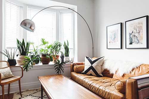 foto de sala de estar com plantas perto da janela