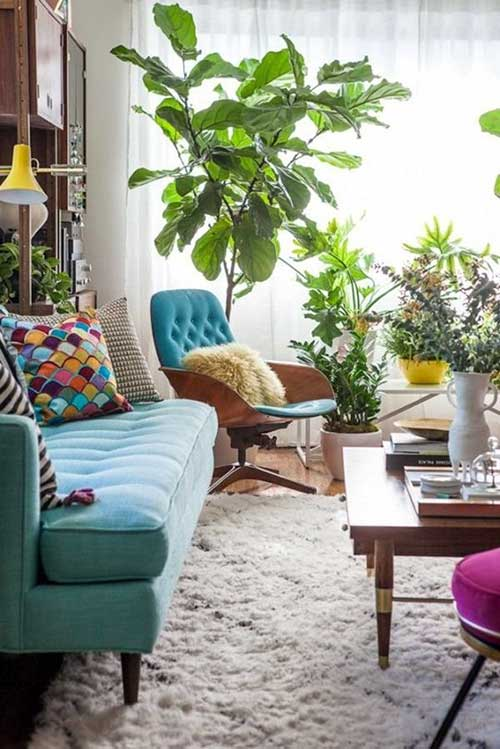 foto de sala de estar com planta grande do lado da poltrona