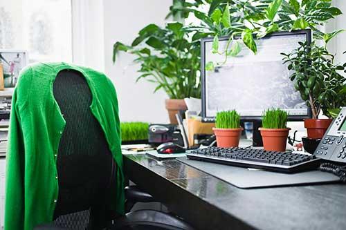 foto do pinterest de escritorio comercial cheio de plantas