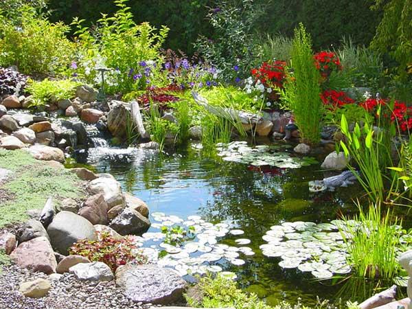 use pedras grandes para enfeitar um lago artificial com peixes