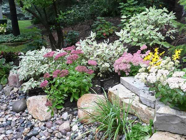 pedras de diferentes tipos e tamanhos dão naturalidade ao quintal